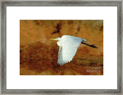 Up Up And Away Framed Print by Betty LaRue