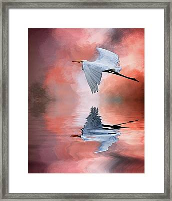 Up. Up And Away Framed Print by Cyndy Doty