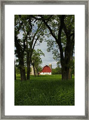 Framed Print featuring the photograph Up Yonder by Viviana  Nadowski