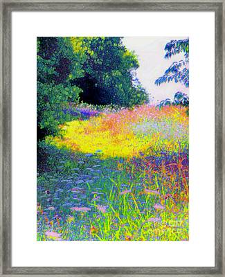 Uphill In The Meadow Framed Print by Shirley Moravec