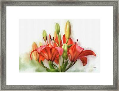 Uplifting Framed Print by Lois Bryan