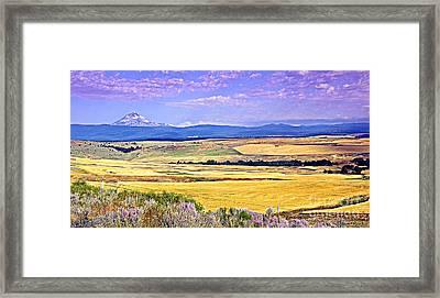Upon Golden Fields Framed Print by Steve Warnstaff