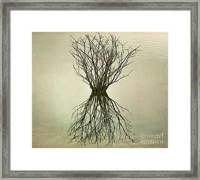 Framed Print featuring the photograph Upon Reflection I by Terry Rowe