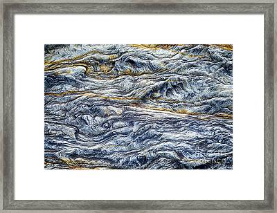 Upon The Seashore Framed Print by Tim Gainey