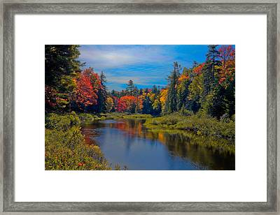 Upper Branch Of The Moose In Autumn Framed Print by David Patterson