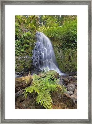 Upper Mccord Creek Falls Framed Print by David Gn
