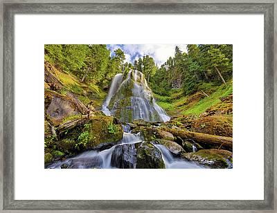 Upper Tier Of Falls Creek Falls In Summer Framed Print by David Gn