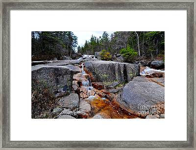 Upper Zealand Falls Framed Print by Catherine Reusch Daley