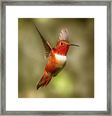 Upright Framed Print