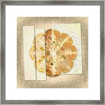 Upshifting Unconcealed Flowers  Id 16165-105815-13851 Framed Print by S Lurk