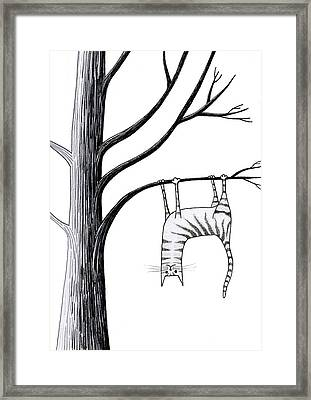 Upside Down  Framed Print by Andrew Hitchen