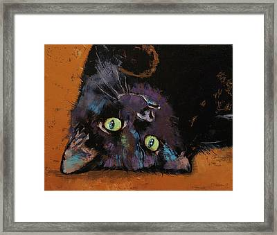 Upside Down Kitten Framed Print
