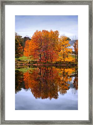 Upside Down Framed Print by Lilia D