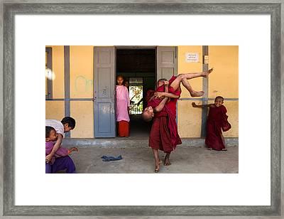 Upside Down Framed Print by Marji Lang