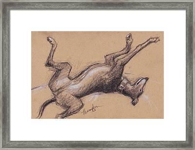 Upside Hound Framed Print