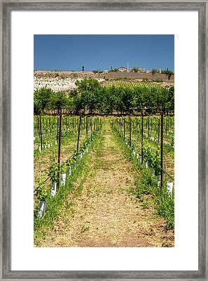Urban Farming Framed Print