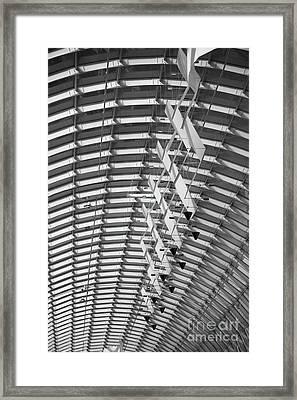 Urban Sociology Framed Print by Charles Dobbs