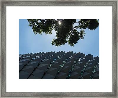 Urban Vesus Nature Framed Print