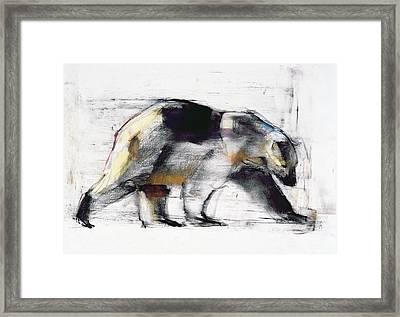 Ursus Maritimus Framed Print