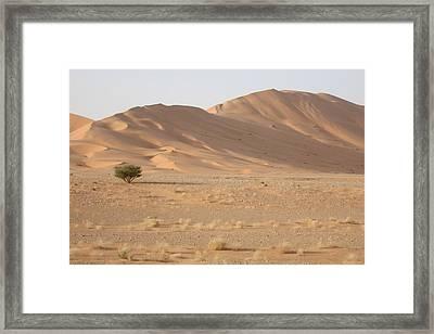 Uruq Bani Ma'arid 5 Framed Print