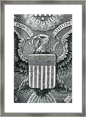 Us Dollar Eagle Framed Print