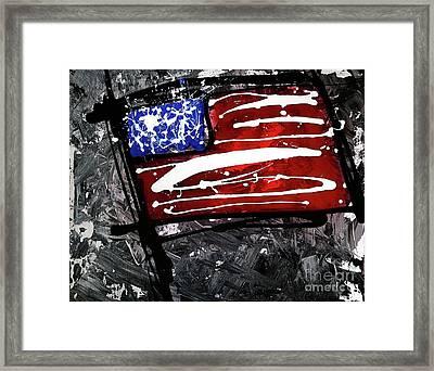 Us Flag Series #2 Framed Print