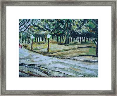 Us Landscpe-14 Framed Print by Anand Swaroop Manchiraju