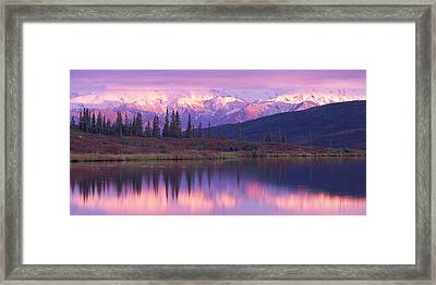 Usa, Alaska, Denali National Park Framed Print by Panoramic Images