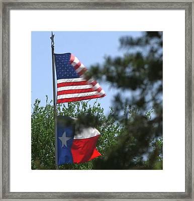 Usa Blesses Texas Framed Print