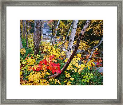 Usa, New Hampshire, White Mountains Framed Print