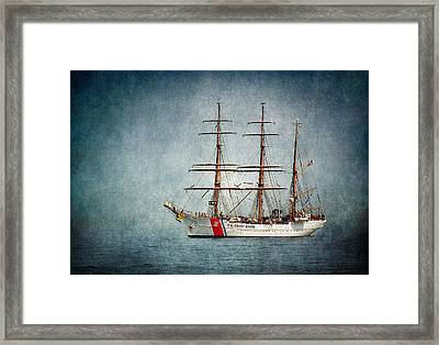 Uscs Eagle Framed Print