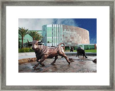 Usf Tampa Framed Print by Francesco Roncone