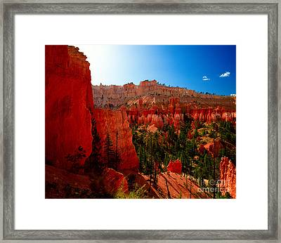 Utah - Navajo Loop Framed Print by Terry Elniski