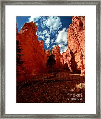 Utah - Bryce Canyon Framed Print