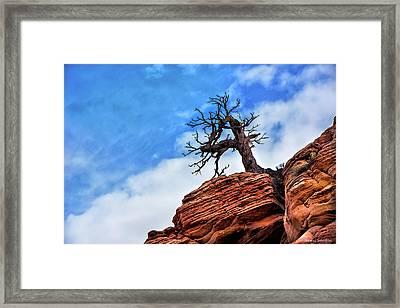Utah Juniper On The Cliffs Framed Print by Thomas Schoeller