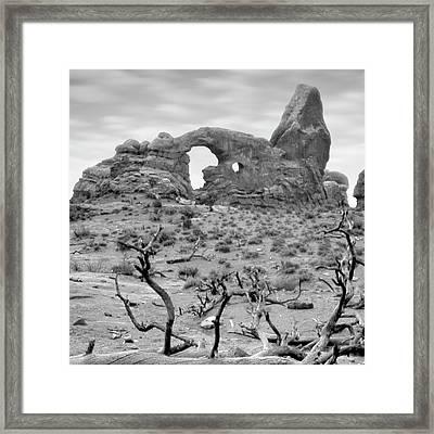 Utah Outback 37 Framed Print by Mike McGlothlen