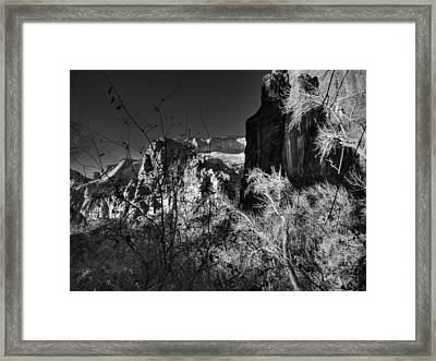 Utah - Zion National Park 003 Bw Framed Print