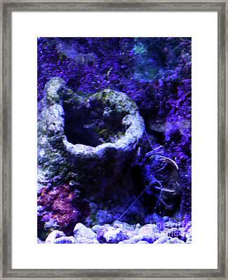 Framed Print featuring the digital art Uw Coral Stone by Francesca Mackenney