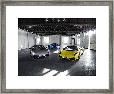 V10 Family Framed Print
