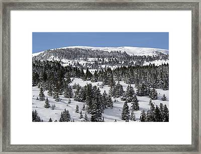 Vail Pass Colorado Winter Framed Print by Brendan Reals