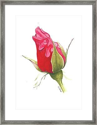Valentines Framed Print