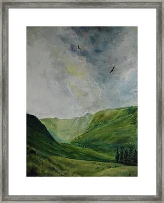 Valley Of Eagles Framed Print
