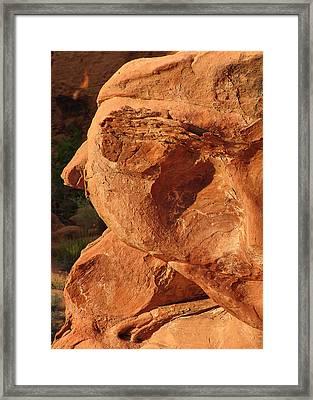 Valley Of Fire - Nevada's Crown Jewel Framed Print by Christine Till