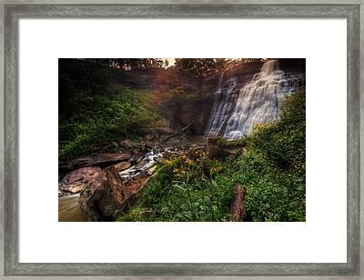 Valley Of Golden Light Framed Print