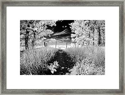 Valley Of Light Framed Print
