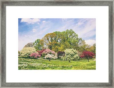 Framed Print featuring the photograph Valley Of The Daffodils by Jessica Jenney