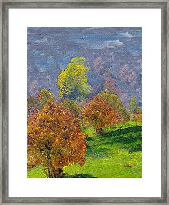 Valley Of The Trees Framed Print