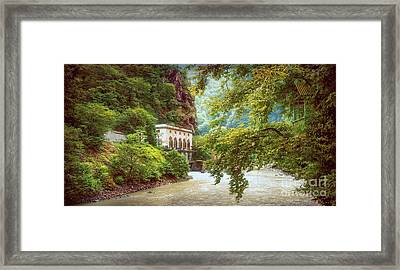 Valley Of Trees Framed Print by Svetlana Sewell