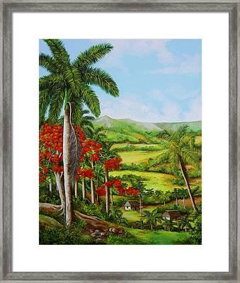 Valley Of Yumuri Framed Print by Dominica Alcantara