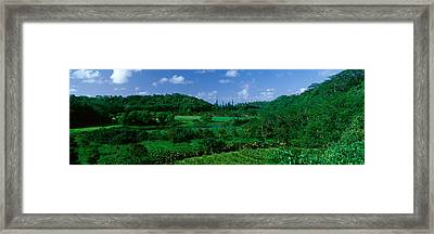 Valley Off Of Route 56, Kauai, Hawaii Framed Print by Panoramic Images